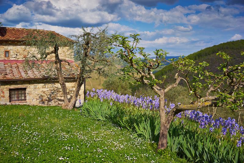 Azienda Querceto di Castellina | Im Chianti