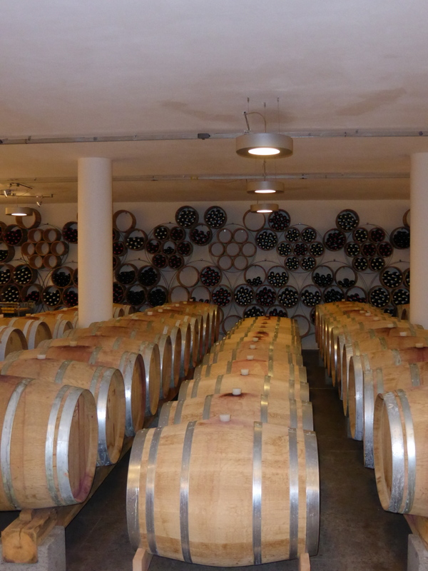 T8-Roccafiore Chiaono bei Todi Umbrien - Weinkeller