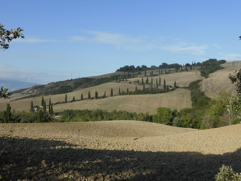 TS-bei Pienza Toskana - Val d'Orcia