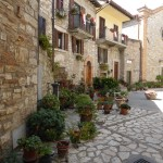 T6 - Umbrien Monte Castello di Vibio