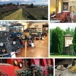 Impressionen Emilia Romagna