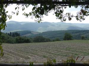 Chianti - Castelvecchi