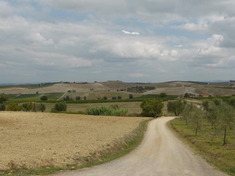Toskana - Landschaft strada biancha