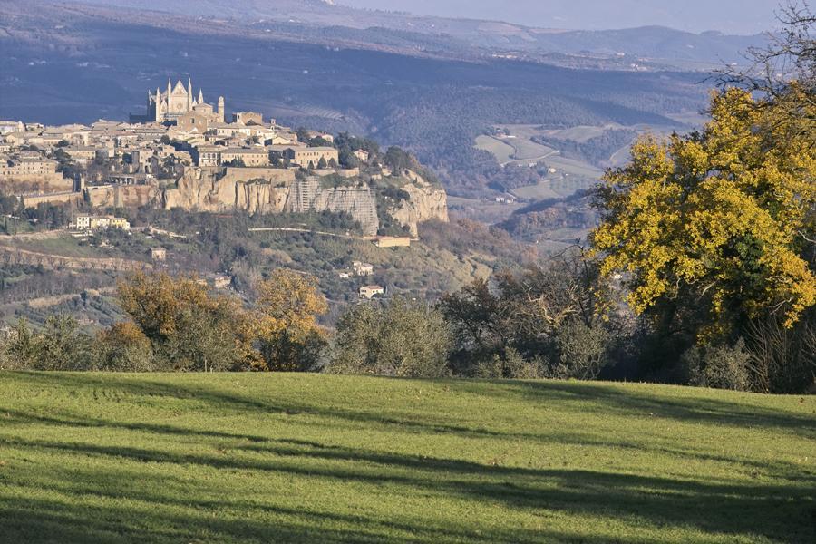 View of Orvieto across field