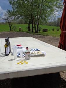 Olivenöl-Wein-Verkostung bei Sting