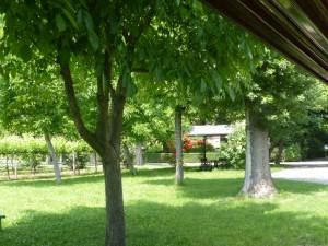 Villa San Donnino - Garten mit Lounge