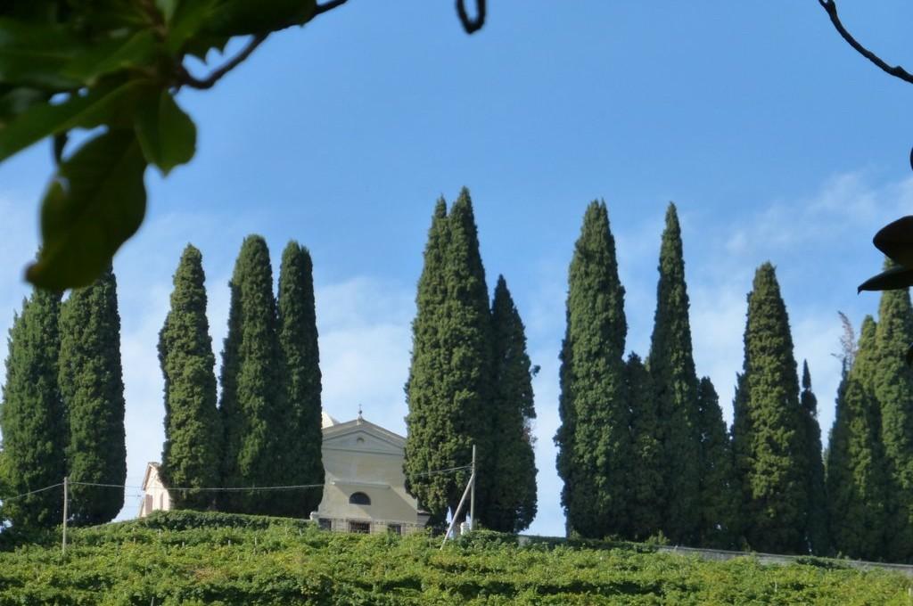 Blick zur Chiesa di San Floriano in Valdobbiadene