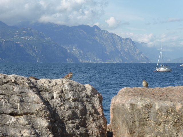 Umbria mia Tour 08 | Südtirol & Gardasee – Juni 2020