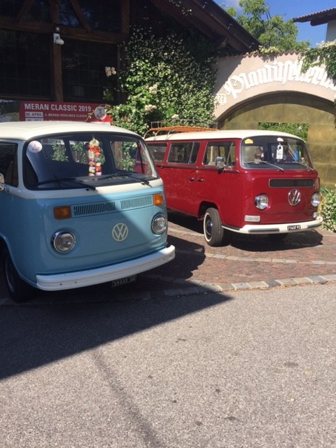 VW-Bulli Weinbergtour
