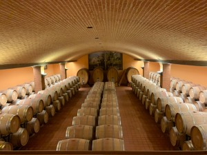 Weingut Morellino