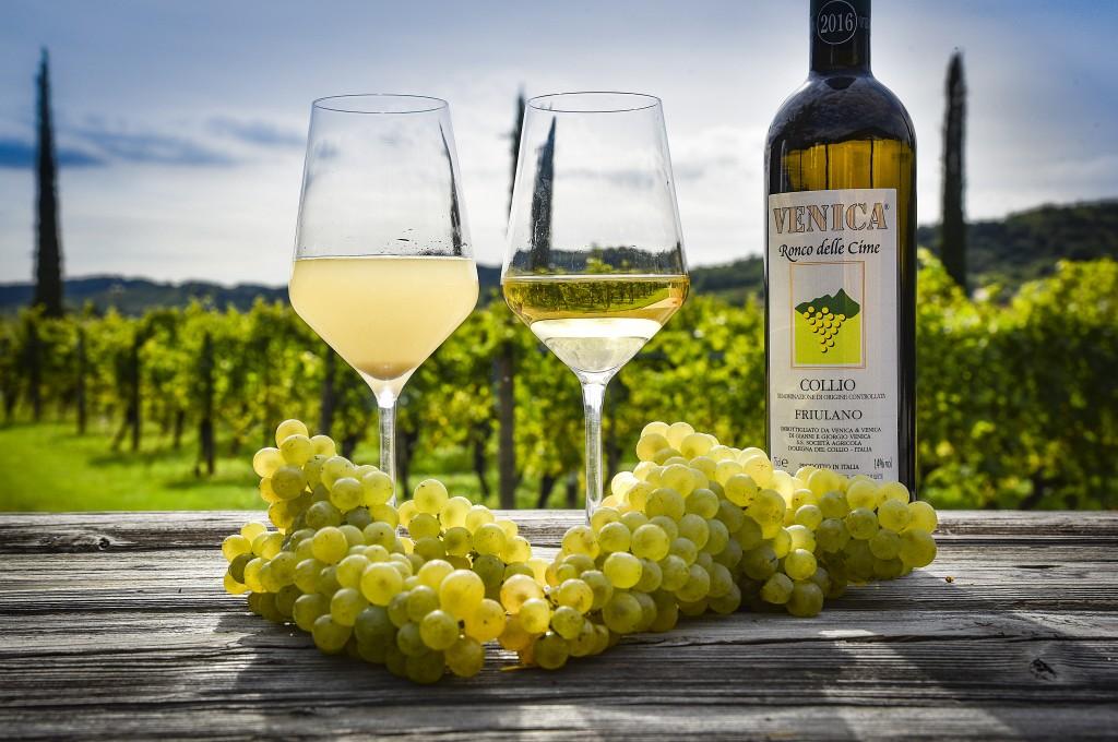 T10 - VENICA & VENICA _Wine Resort _Dolegna del Collio _wine FRIULANO _Ronco delle Cime _Uva & Mosto Vendemmia 2017 _4500x3000 _2 _Photo ©Carola Nitsch