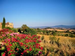 External_Fattoria Vecchia_Tuscany (2)
