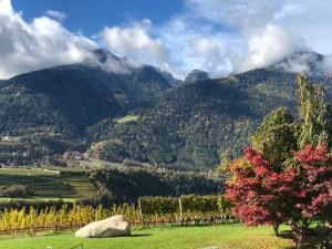 Südtirol im Herbst - Vinum Classic 2020