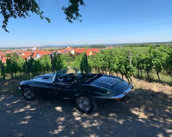 Fränkisches Weinland -Weingut Roth- Aussicht