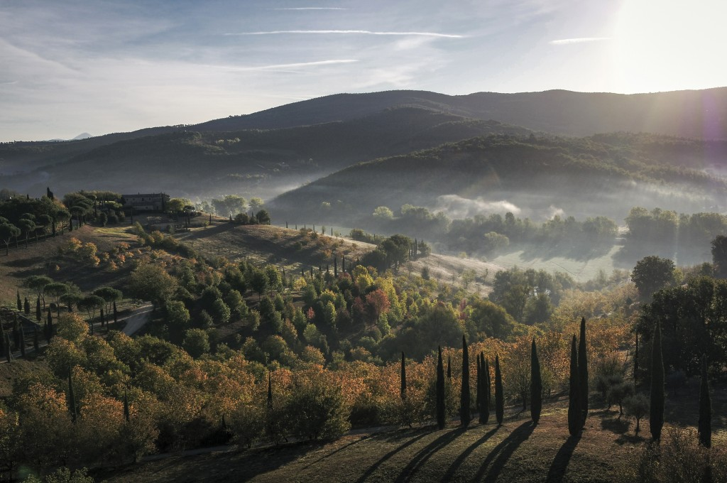 DCIM100MEDIADJI_0055.JPG - Copyright_ Castello di Reschio